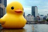 wpid-giant+rubber+duck.jpeg
