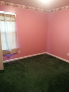Green Carpet...Pink Walls....rose wallpaper border O_O